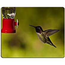 MSD Natural Rubber Gaming Mousepad Hummingbird and feeder Side view of hummingbird hovering next to a bird feeder IMAGE 20389323
