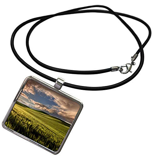 3dRose Danita Delimont - Farms - Rolling Hills of Wheat, Palouse Region of Eastern Washington State. - Necklace with Rectangle Pendant (ncl_315083_1)