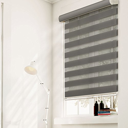 Chicology Free-Stop Cordless Zebra Roller Shades / Combi Blind Curtain Drape, Dual Layer, Sheer or Privacy - Striped Granite, 23W X 72H