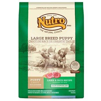 Nutro Standard Dry Dog Food