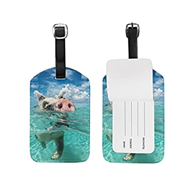 cf820eb8ba28 60%OFF Cooper girl Wild Swimming Pig Luggage Tag Travel ID Label ...