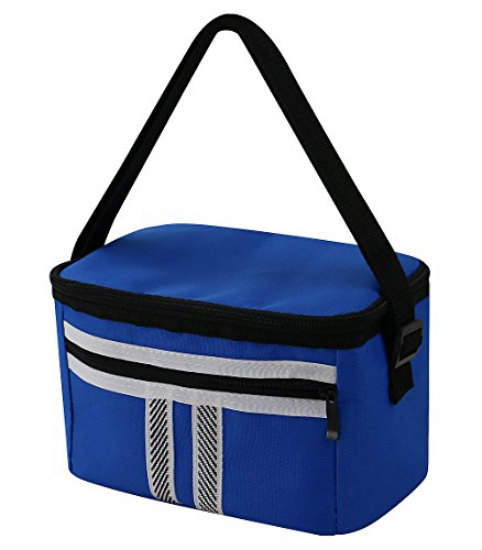 iwill CREATE PRO 6L Freezable Lunch Box for outing, camping and BBQ etc. Good Insulated Effect, Fashion Appearance, Blue (Insuated)
