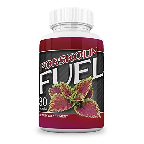 Fuel Metabolism Ingredients Forskohlii Supplement product image