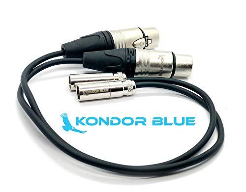 KONDOR BLUE (2 Pack) 12