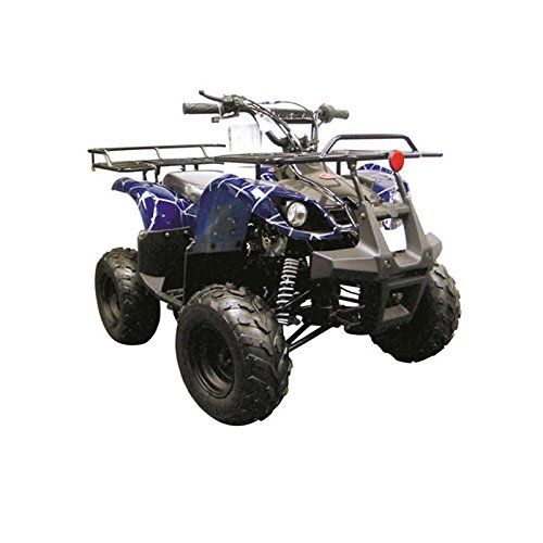 Coolster 3125R New SPIDER 125CC Kids ATV Fully Auto with Reverse ARMY BLUE