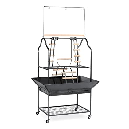 Image of Pet Supplies Prevue Hendryx 3180 Pet Products Parrot Playstand, Black Hammertone