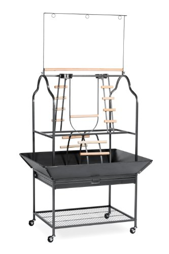 Parrot Playpen (Prevue Hendryx 3180 Pet Products Parrot Playstand, Black Hammertone)