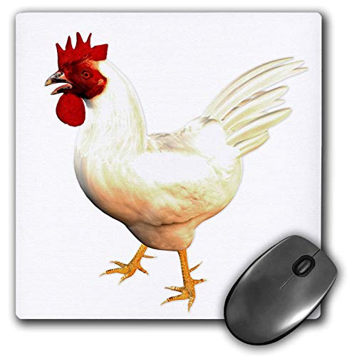 3dRose Boehm Graphics Birds - Leghorn Rooster - Mousepad -