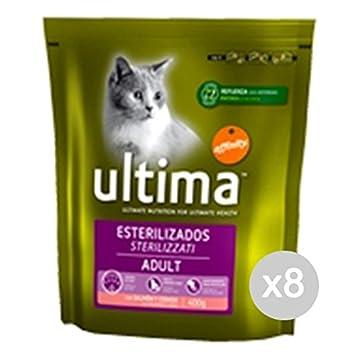 Juego 8 Última gato 206 Croccantini Steril Salmón 400 g comida ...