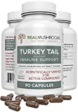 Turkey Tail Mushroom Extract Immune Support (90ct), 500mg Organic Turkey Tail Mushroom Supplement Capsules, Antioxidant & Immune System Booster Pills, 45-Day Supply of Turkey Tail Mushroom Supplements