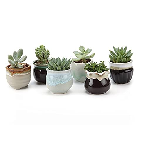 T4U 2.5 Inch Ceramic Flowing glaze Black&White Base Serial Set Sucuulent Plant Pot/Cactus Plant Pot Flower Pot/Container/Planter Package 1 Pack of 6