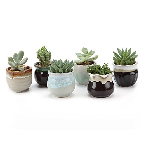 T4U 2.5 Inch Ceramic Succulent Pot,Cactus Planter Pot Plant Container Flower Pot Flowing Glaze Black&White Serial for Christmas Gift Pack of 6 -