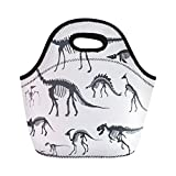 Semtomn Neoprene Lunch Tote Bag Silhouettes Skeletons Dinosaurs and Fossils Man Children Comparison Reusable Cooler Bags Insulated Thermal Picnic Handbag for Travel,School,Outdoors,Work