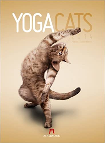 Yoga Cats 2014: Amazon.de: Daniel Borris: Bücher