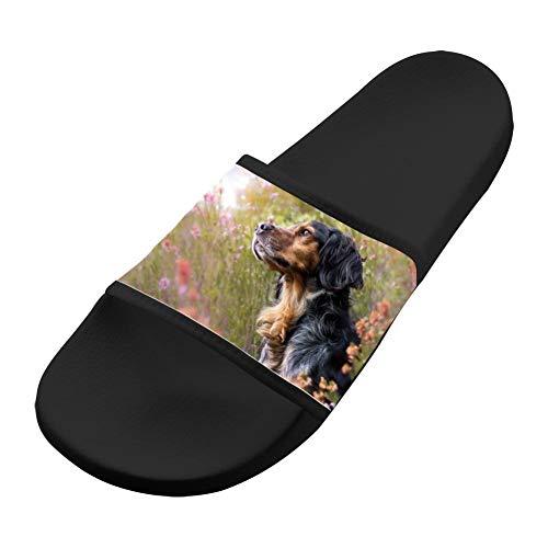 Sandals Dog Comfortable Soft Black Women Casual Slippers Slip Men Sandals Non amp; fyrfaS