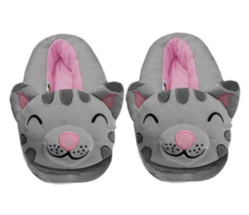 Big Bang Theory Soft Kitty Slippers