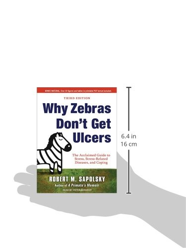 why zebras dont get ulcers (why zebras don't get ulcers, chapter 18, page 404-5) on race and anxiety: some recent studies that i find truly unsettling show that if you flash a picture of someone from a different race, the amygdala tends to light up.
