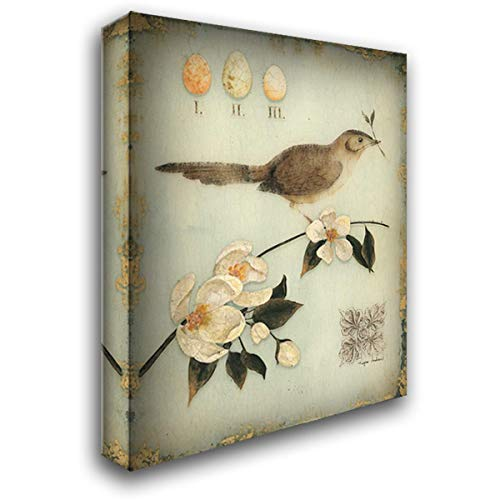 Design Andrew Regina - Blossom Recollection 20x24 Gallery Wrapped Stretched Canvas Art by Regina Andrew Design