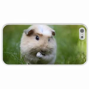 Customized Apple iPhone 5 5S PC Hard Case Diy Personalized DesignCover rodent Cavy macro grass greens White