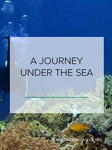 A Journey Under the Sea (Best Thing For Colic)