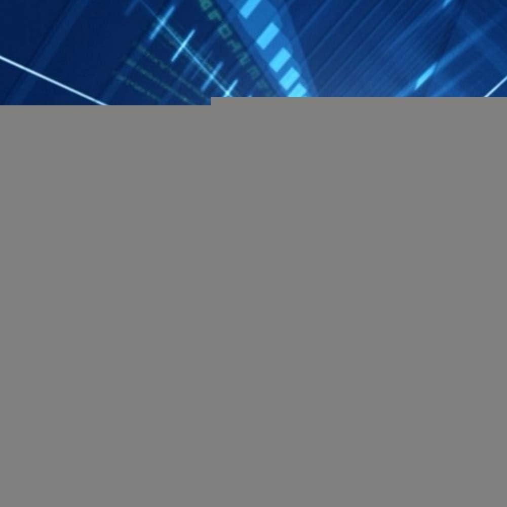 Pasamer Wired Mini klaxon sir/ène Fort syst/ème dalarme sonore de la s/écurit/é du v/éhicule /à Domicile avec Le Soutien 110dB DC 12V