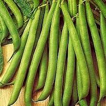 Mr Fothergills Seeds Tendergreen Dwarf Bean Seeds