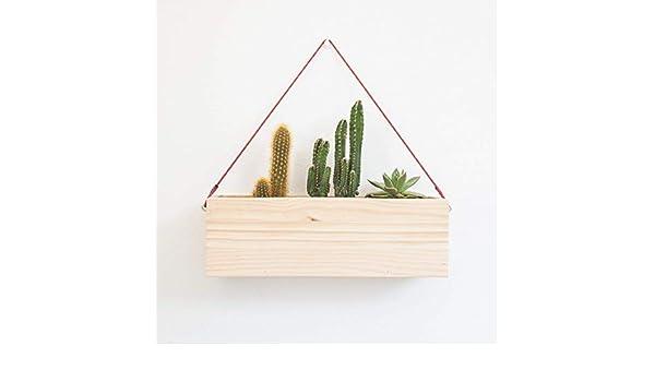 Maceta colgante de interior para jardín vertical, de madera para cactus y plantas suculentas: Amazon.es: Handmade