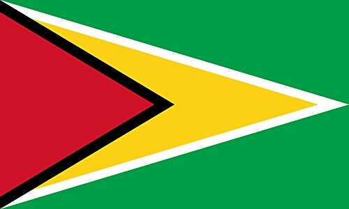 Guyana Flag from SoCal Flags 3x5 Foot Polyester Guyana Banne