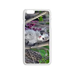 The Cat In The Tree Hight Quality Plastic Case for Iphone 6 wangjiang maoyi