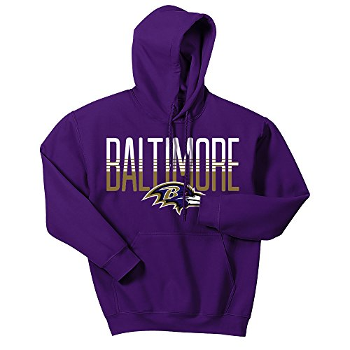Zubaz NFL Baltimore Ravens Men's Gradient Logo Hoodie, Large, Purple (Baltimore Ravens Logo Jersey)