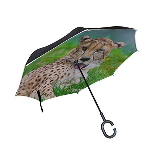 (Rh Studio Inverted Umbrella Rain Sun Car Reversible Umbrella Cheetah Cat Predator Grass Wash Lay Large Double Layer Outdoor Upside Down Umbrella with Women with Uv Protection C-Shaped Handle)