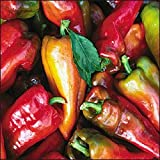 "(VHP)~~""BEAVER DAM"" HOT PEPPER~Seed!!!!~~~~Mild Hungarian Heirloom!"