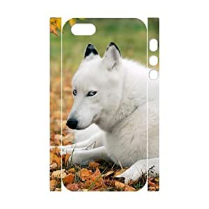 Customized Phone Case with Hard Shell Protection for Iphone 5,5S 3D case with Sled dogs lxa#216425