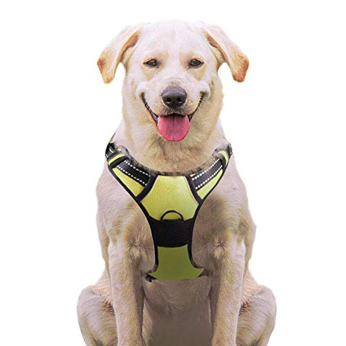 Eagloo No Pull Dog Harness with Front Clip, Walking Pet Harness with 2 Metal Ring and Handle Reflective Oxford Padded Soft Vest for Small Medium Large Breed (Green, M)