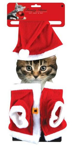 Christmas Cat Outfit: Amazon.co.uk: Kitchen & Home