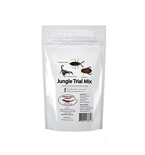 Edible Insects Jungle Trail Mix 5 pack Edible Forest