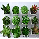 Hot New Decorative flower pots planters artificial plants with vase bonsai tropical cactus fake succulent plant potted on the desk
