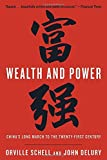 Wealth and Power: China's Long March to the Twenty-first Century