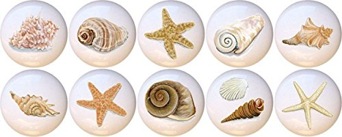 Set of 10 Artistic Seashells Decorative Glossy Ceramic Drawer Knobs
