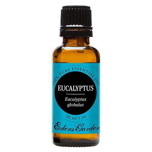 Eucalyptus 100% Pure Therapeutic Grade Essential Oil, 30 ml