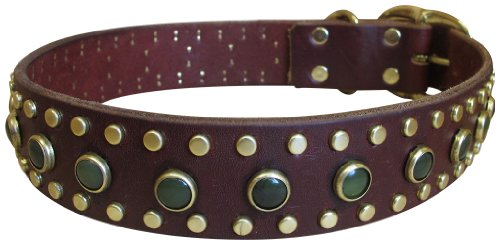 "Paco Collars - ""Pocket"" - Handmade Leather Large Dog Collar - 1.5""Wide - Brass - Black 20""-22"""