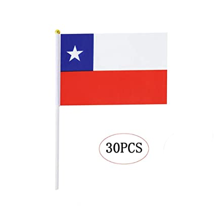 Chile Stick Flag,Chilean Hand Held Mini Small Flags On Stick International  Country World Stick Flags For Party Classroom Garden Olympics Festival