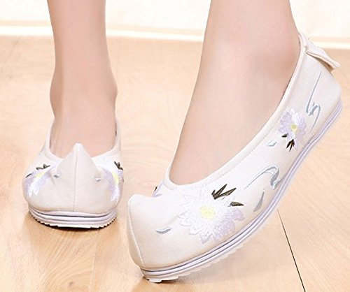 AvaCostume Womens Begonia Flower Embroidery Casual Dance Dress Shoes White qFNDE4vS2