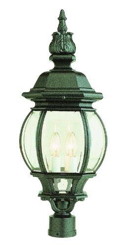 Trans Globe Lighting 4062 BK Outdoor Parsons 28