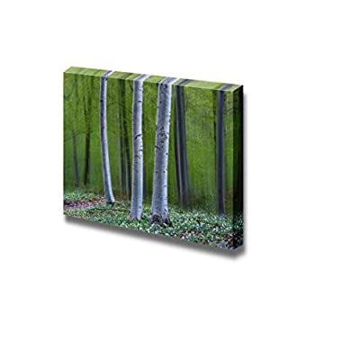Three Tree Trunks in Magic Forest in Spring with Anemone Flowers on The Ground - Canvas Art Wall Art - 12