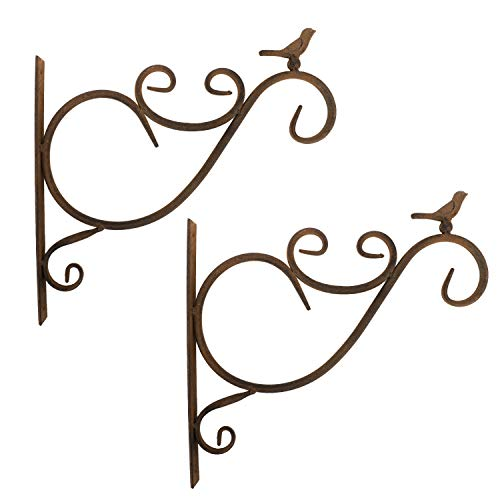 Lewondr Wall Hanging Plants Bracket, 2 Pieces Retro Bird Wrought Iron Hanging Flower Hooks Rack Wall Bracket for Plant Basket Lanterns with Screws, Garden Balcony Outdoor Décor - Iron Outdoor Wall Mounted Lantern