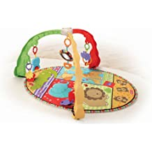 Fisher-Price Luv U Zoo Musical Mirror Activity Gym (Discontinued by Manufacturer)