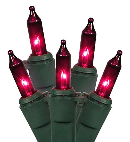 Vickerman Mini Light Set Features 100 Bulbs Lights on Green Wire and 4