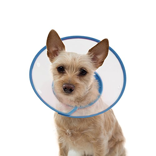 Vivifying Pet Cone Adjustable 6 7 9 Inches Lightweight Elizabethan Collar For Puppies Small Dogs And Cats Blue Buy Online In Uae Misc