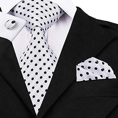HYCZJH Corbatas de Seda con Corbata de Lunares de Moda para ...